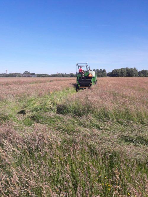 opbrengstmeting kruidenrijk grasland - Hans van Adrichem IMG-20200529-WA0000